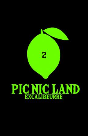 PIC NIC LAND - Volume 2