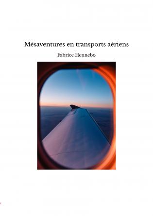Mésaventures en transports aériens