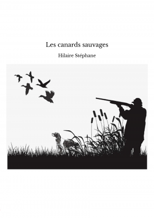 Les canards sauvages