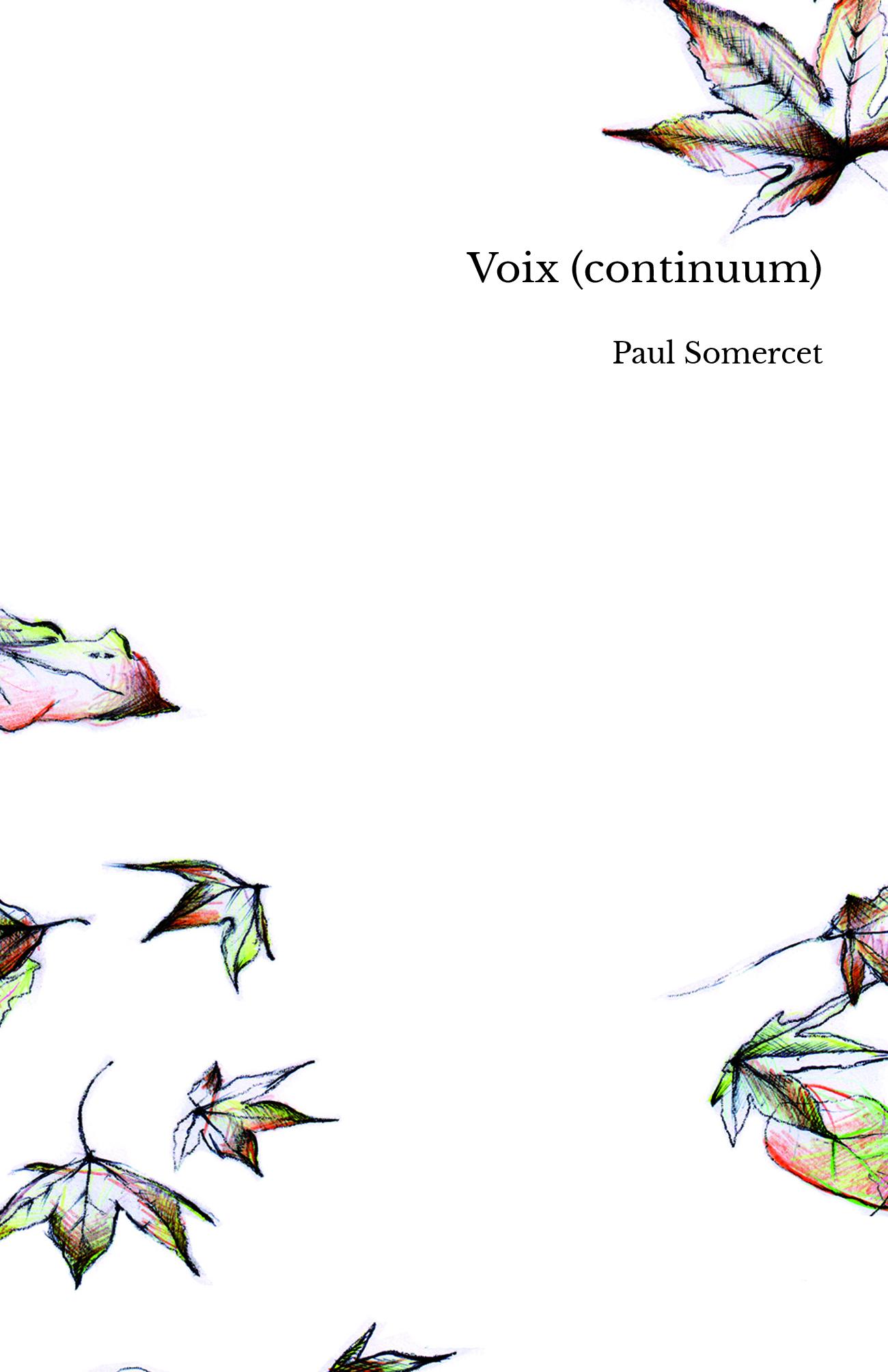 Voix (continuum)