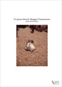 Un joyau dans le Ahaggar Tamanrasset