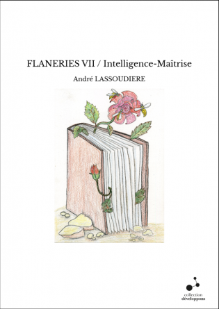 FLANERIES VII / Intelligence-Maîtrise