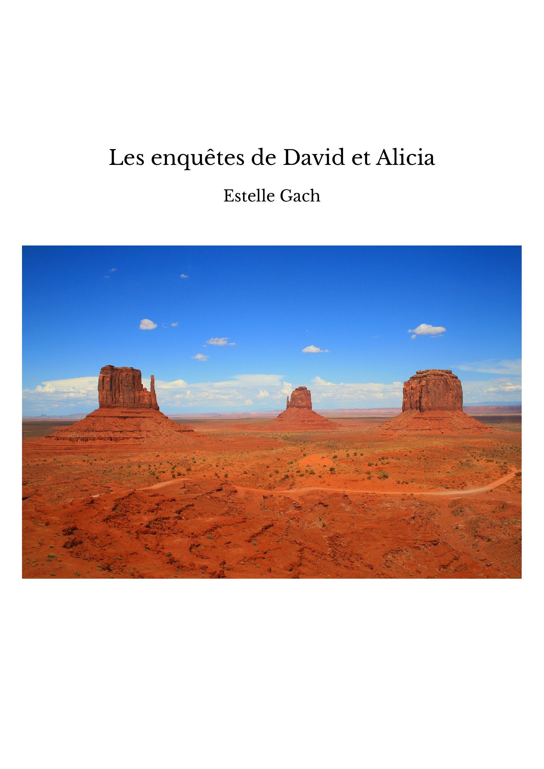 Les enquêtes de David et Alicia