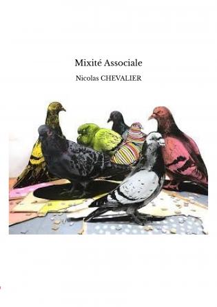 Mixité Associale