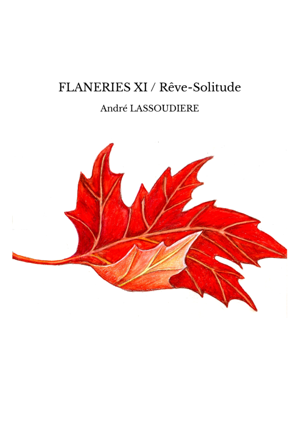 FLANERIES XI / Rêve-Solitude