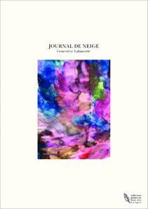 JOURNAL DE NEIGE