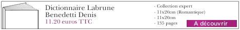 Le livre Dictionnaire Labrune