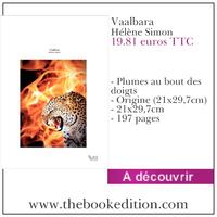 Le livre Vaalbara