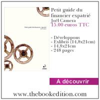 Le livre Petit guide du financier expatrié