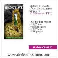 Le livre Spleen et clarté