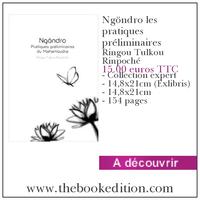 Le livre Ngöndro les pratiques préliminaires