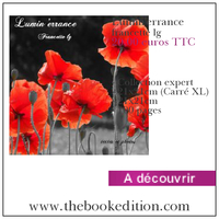 Le livre Lumin\'errance