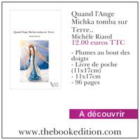 Le livre Quand l\'Ange Michka tomba sur Terre..