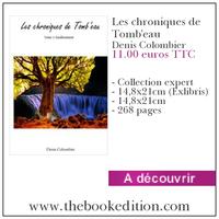 Le livre Les chroniques de Tomb\'eau