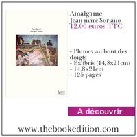 Le livre Amalgame