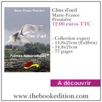 Le livre Clins d\'oeil