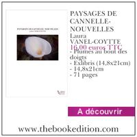 Le livre PAYSAGES DE CANNELLE- NOUVELLES