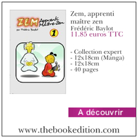Le livre Zem, apprenti maître zen