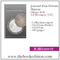 Le livre Journal d\'un Détenu Mineur