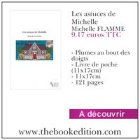 Le livre Les astuces de Michelle