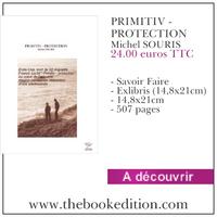 Le livre PRIMITIV - PROTECTION