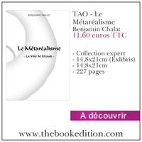 Le livre TAO - Le Métaréalisme