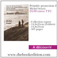 Le livre Primitiv protection 2