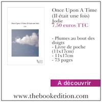 Le livre Once Upon A Time (Il était une fois)