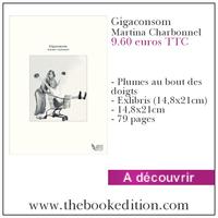 Le livre Gigaconsom