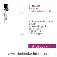 Le livre Fandom