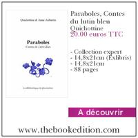 Le livre Paraboles, Contes du lutin bleu