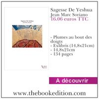 Le livre Sagesse De Yeshua