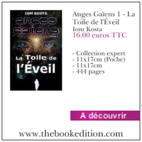 Le livre Anges Gaïens 1 - La Toile de l\'Éveil