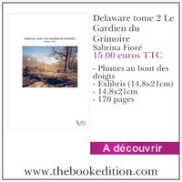 Le livre Delaware tome 2 Le Gardien du Grimoire