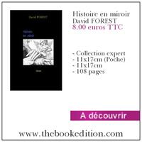 Le livre Histoire en miroir