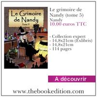 Le livre Le grimoire de Nandy (tome 5)