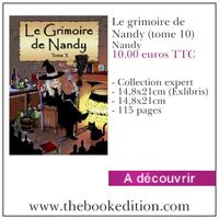 Le livre Le grimoire de Nandy (tome 10)
