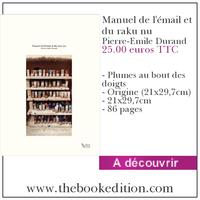 Le livre Manuel de l\'émail et du raku nu