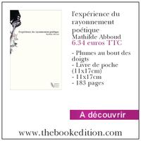 Le livre l\'expérience du rayonnement poétique