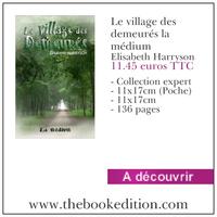 Le livre Le village des demeurés la médium