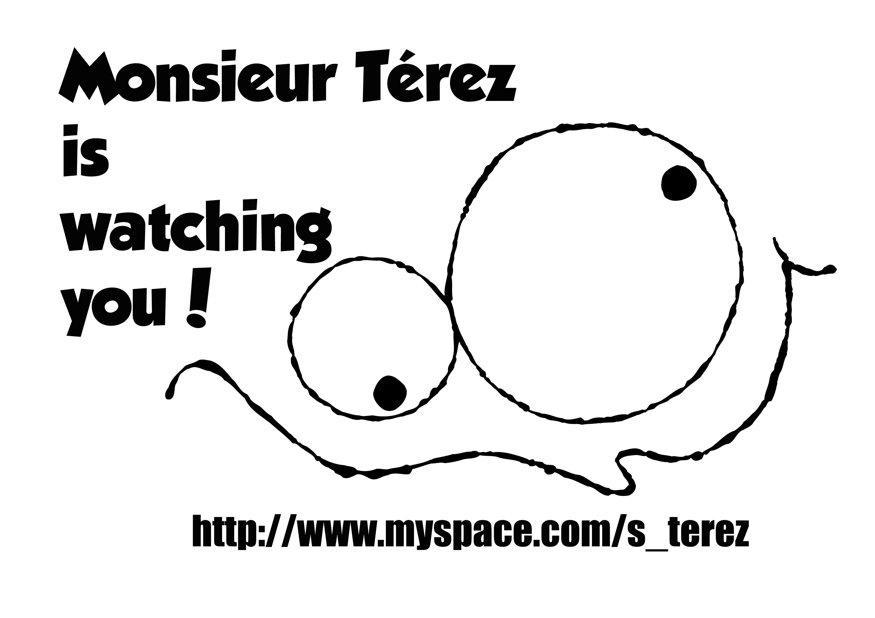 Monsieur Térez